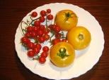 Fotovijest: Neobičan paradajz!