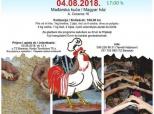Najava gastromanifestacije u Mađarskoj kući