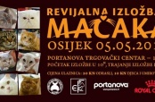 Najava Revijalne izložbe mačaka u Osijeku