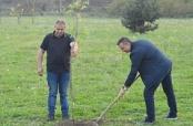 Posađeno 70 stabala u Ulici Antuna Mihanovića