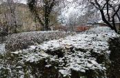 Prvi snijeg u Belom Manastiru