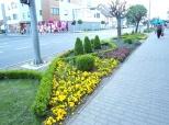 Fotovijest: Sajam cvijeća u Prelogu
