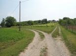 Fotoizlet vinskom cestom do Vinotočja Dobrovac