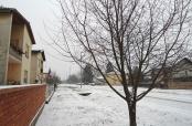Ponovo snijeg u Belom Manastiru