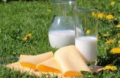"""Donacija mliječnih proizvoda """"Prijateljima Svetog Martina"""""""